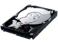 Opruiming Samsung pc harddisk Spinpoint F1 DT HD251HJ, 250GB